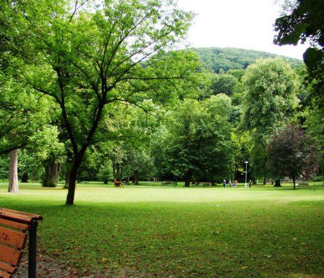 Yemyeşil Parklar